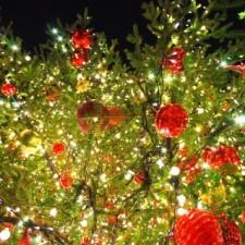 12月の定休日のご案内と、年末年始休業のお知らせ